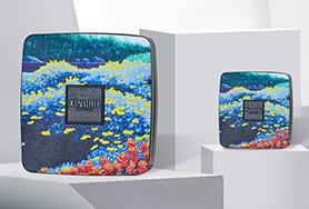 XINPHIE-晶妍柔润气垫CC霜